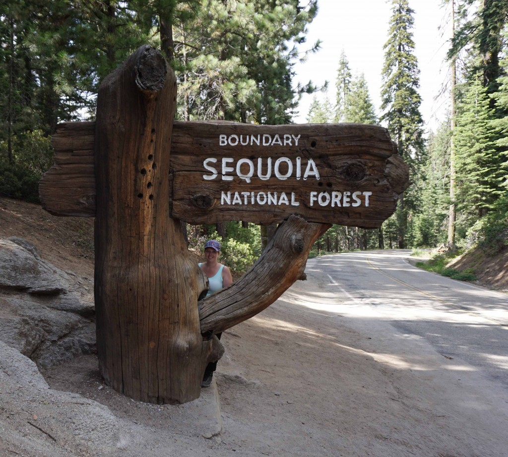 Welcome to Sequoia NP