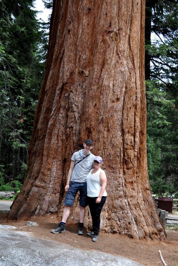 Samen bij de Seqioia boom.